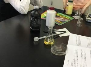 実験4IMG_E1236